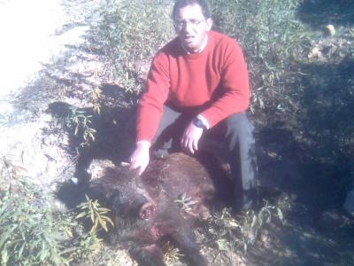 20120221023038-monterias-007.jpg